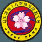 JGSDF Zama Karate Patch